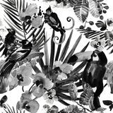 Tropical pattern. watercolor wild jungle nature seamless background royalty free stock image