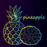 Tropical Pineapple Fruit Royalty Free Stock Image