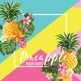 Tropical Pineapple Fruits and Flowers Summer Banner, Graphic Background, Exotic Floral Invitation, Flyer or Card Stock Images