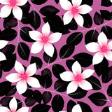 Tropical pink hibiscus flowers with black leaves seamless patter Stock Images