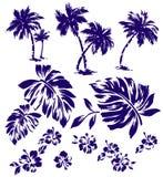 Tropical plant Royalty Free Stock Photos