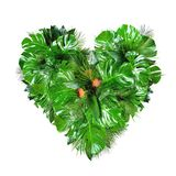 Tropical plant leafs heart shape isolated on white background
