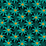 Tropical Plant Pattern with Citrus Fruit. Tropical Plant Pattern with orange citrus fruit on dark background Stock Photos