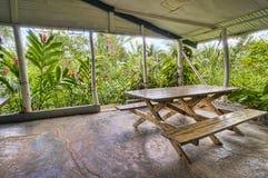 Tropical plantation Royalty Free Stock Photography
