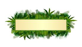 Tropical plants background. rectangle floral frame with space for text in concept bamboo. Illustration of Tropical plants background. rectangle floral frame with Stock Images