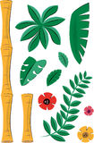 Tropical Plants and Bamboo Elements Stock Photos