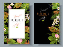 Tropical plants banners. Vector tropical plants vertical banners on black background. Exotic floral design for cosmetics, perfume, health care products Stock Photo