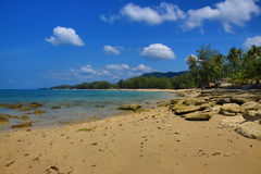 Tropical plants, beach and trees, Phra Ae Beach, Ko Lanta, Thailand Stock Photography