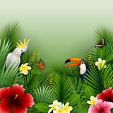 Tropical plants and birds collection set. Illustration of Tropical plants and birds collection set Royalty Free Stock Photography