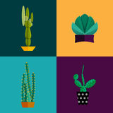 Tropical plants, cactus vector set in flat style. Royalty Free Stock Images