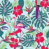 Tropical plants and flowers with toucan, parrot, flamingo birds Stock Photography