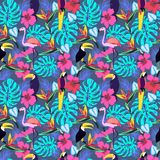 Tropical plants and flowers with toucan, parrot, flamingo Stock Image