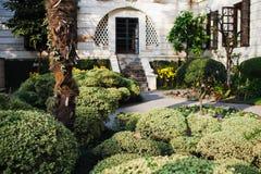 Tropical plants in Garden of Dreams park Stock Image
