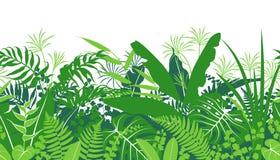 Tropical Plants Green Seamless Pattern royalty free illustration