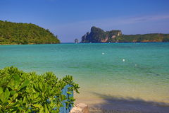 Tropical plants in the grounds of the hotel Cabana Resort, Loh Dalum Bay, Phi Phi, Thailand Stock Photos
