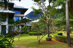 Tropical plants in the grounds of the hotel Cabana Resort, Tonsay Bay, Phi Phi, Thailand Stock Images