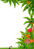 Tropical plants and parrots. Stock Images
