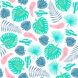 Tropical plants seamless pattern with leaves and cactuses. Stock Photography