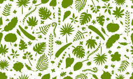 Tropical plants, seamless pattern Royalty Free Stock Images