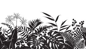 Tropical Plants Silhouette Pattern. Seamless line horizontal pattern made with tropical plants silhouette. Black and white floral texture with  monstera, palm Stock Image