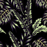 Tropical plants trendy seamless background Stock Image