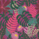Tropical plants. Vector seamless pattern Royalty Free Stock Image