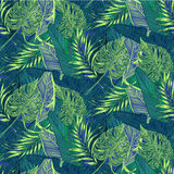 Tropical plants. Wild seamless pattern vector with tropical plants in a trend. stylish, vector, plant, exotic illustration Stock Photography