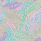Tropical plants Royalty Free Stock Photo
