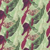 Tropical plants. Wild seamless pattern vector with tropical plants in a trend. stylish, vector, plant, exotic illustration Stock Photo