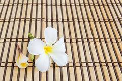Tropical Plumeria on Bamboo Mat for spa and wellness concept Stock Photo