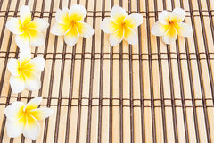 Tropical Plumeria on Bamboo Mat for spa and wellness concept. Close up Tropical Plumeria on Bamboo Mat for spa and wellness concept Stock Photography