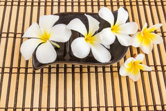 Tropical Plumeria on Bamboo Mat for spa and wellness concept. Close up Tropical Plumeria on Bamboo Mat for spa and wellness concept Stock Photo