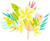 Tropical plumeria flowers Stock Photos