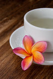 Tropical Plumeria with Green Chinese Tea Royalty Free Stock Images