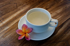 Tropical Plumeria with Green Chinese Tea for spa Stock Photos