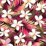 Tropical Plumeria with red and orange leaves seamless pattern Stock Images