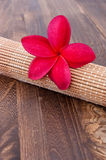 Tropical Plumeria for spa and wellness concept. Tropical Plumeria on a rattan mat for spa and wellness concept Stock Photography