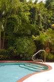 Tropical Pool Royalty Free Stock Images