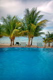 Tropical Pool and Beach. An Infinity Pool with Beach and Palm Trees stock image