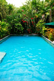 Tropical pool Stock Image