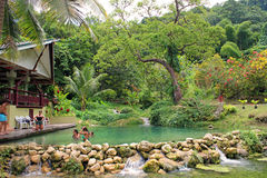 Tropical pool, Vanuatu. Tropical pool on the way to the Cascades waterfall, Port Vila, Vanuatu Stock Photography