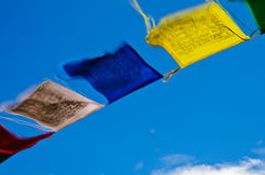 Tropical Prayer Flags. Tibetian prayer flags blowing in the tropical sunshine of southern India Royalty Free Stock Photos