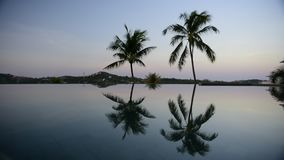 Tropical private pool near the sea. At sunset stock footage