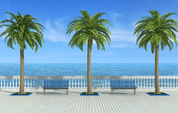Tropical promenade Stock Photo