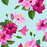 Tropical Purple Hibiscus Flower Seamless Pattern. Floral Summer Background for Fabric Textile, Wallpaper, Decor. Wrapping Paper. Watercolor Botanical Design Stock Photography