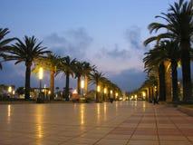 Tropical quay. Evening tropical quay palm spain Stock Image