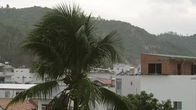 Tropical rain above the city. Azia stock video footage