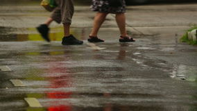 Tropical rain. Close-up of people footsteps. Puddles after rain stock video