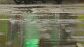 Tropical rain. Close-up of people footsteps. Puddles after rain stock footage