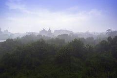 Tropical Rain. Royalty Free Stock Photo